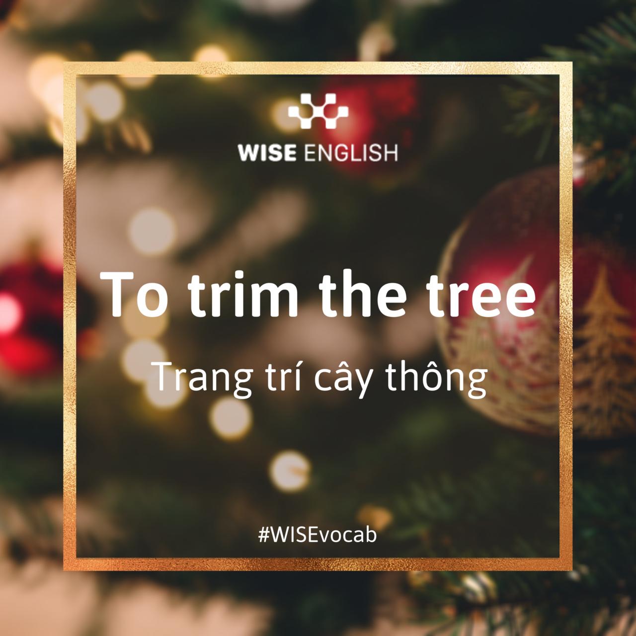 Idioms Giáng Sinh - Trang trí cây thông