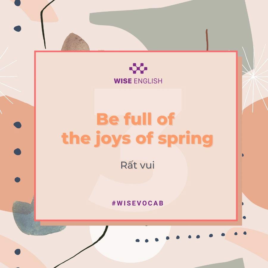 idioms spring 4